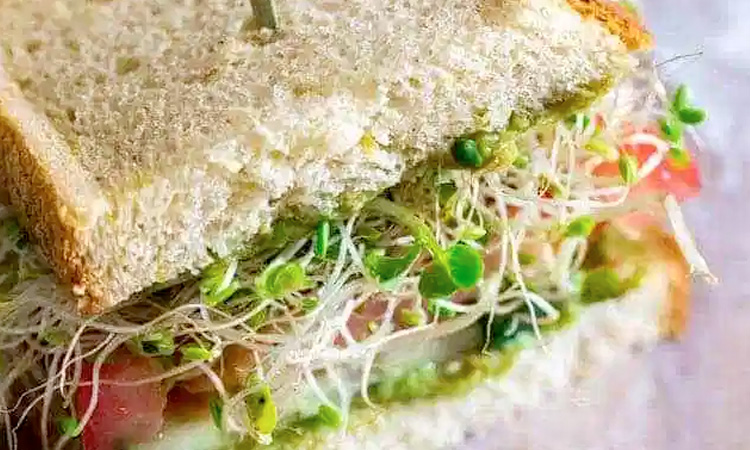 Healthy Sprouts Sandwich